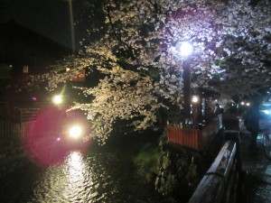 20170407shirakawa13